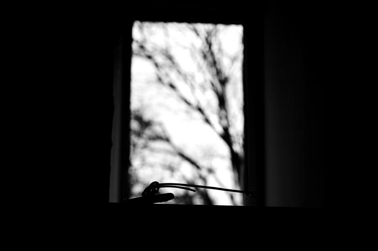 © Window Berlin 2009