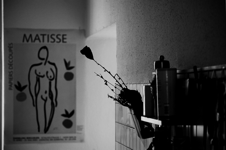 © Kitchen shelf, Berlin 2010 by Fritsch
