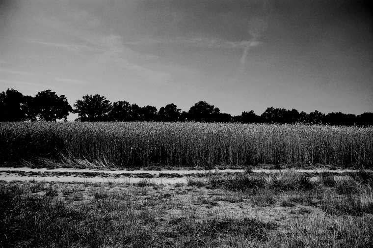 © Ruppiner Land 2010 by Fritsch